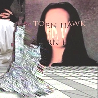 TORN HAWK - We Burnt Time : VALCROND VIDEO (US)