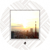 SLOW MOTION REPLAY PRESENTS DUNK SHOT BROTHERS - Twilight EP : 12inch