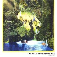 PARASOLS!(MICHIOSHKA & DJ SLEEP) - Jungle Adventure Mix : SEMINISHUKEI (JPN)
