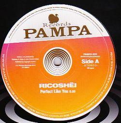 RICOSHËI / DAVE DK - Perfect Like You / Woolloomooloo : 12inch