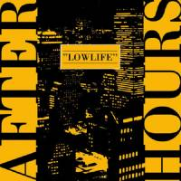 AFTERHOURS - Lowlife : LP
