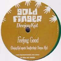 DEEJAYKUL - Feeling Good : 12inch