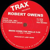 ROBERT OWENS - Bring Down The Walls : 12inch