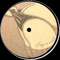 V.A. - Say U Will : SLOWTOWN (FRA)