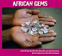 VARIOUS - African Gems : LP