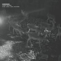 CASSEGRAIN - Tiamat Remixes : PROLOGUE (GER)