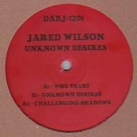 JARED WILSON - Unknown Desires : 12inch