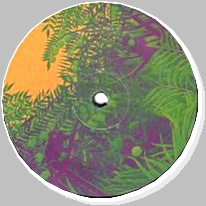 SIMPLE SYMMETRY - Apes In The Orange Groove : 12inch
