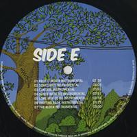 THIS THAT & THE 3RD - Summer In Vienna (Instrumentals) : LP