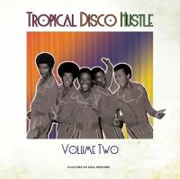 VARIOUS - Tropical Disco Hustle Volume 2 : CULTURES OF SOUL (US)