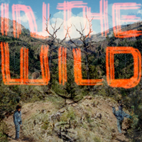 FALTY DL - In The Wild : 2LP