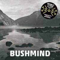 BUSHMIND - 2013 DTW MIX : CD-R
