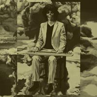 坂本慎太郎(SHINTARO SAKAMOTO) - ナマで踊ろう(Let's Dance Raw) : LP