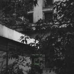 PTAKI - Kalina EP : YOUNG ADULTS (US)