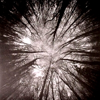 JAMES GINZBURG & YAIR ELAZAR GLOTMAN - Nimbus -Original Soundtrack- : SUBTEXT (UK)