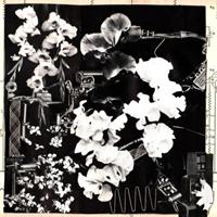 ERGO PHIZMIZ - Two Quartets : LP