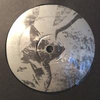 REVERSE COMMUTER - Vinyl Exposure - One : 12inch
