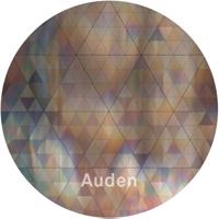 AUDEN - Wall To Wall EP : HOTFLUSH <wbr>(UK)