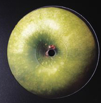 THE MAGHREBAN - Green Apple : 12inch