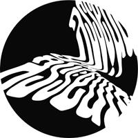 ASUSU - Serra EP : 12inch