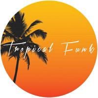 COLE MEDINA - Tropical Funk : 12inch