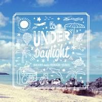 HIKARU meets KENICHI YANAI - Under The Daylight : 7inch