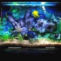 RICK WILHITE (feat. THEO PARRISH / MARCELUS PITTMAN /OSUNLADE) - Analog Aquarium : STILL MUSIC (US)