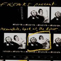 FREAKS - Meanwhile, Back At The Disco : MUSIC FOR FREAKS (UK)
