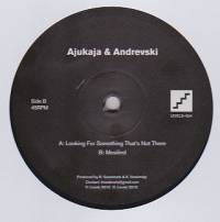 AJUKAJA & ANDREVSKI - Looking For Something That's Not There / Mesilind : LEVELS (UK)