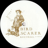 DUNCAN GRAY - The No Safety Word EP : BIRD SCARER (UK)