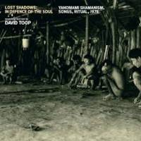 VARIOUS - DAVID TOOP - Lost Shadows: In Defence Of The Soul / Yanomami Shamanism, Songs, Ritual, 1978 : SUB ROSA (BEL)