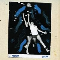 PTAKI - PRZELOT : LP