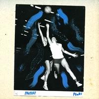 PTAKI - PRZELOT : CD