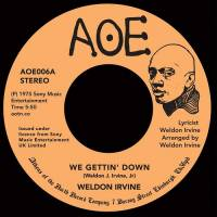WELDON IRVINE - We Gettin' Down : 7inch