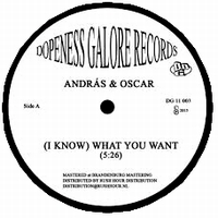 ANDRAS & OSCAR - (I Know) What You Want : 12inch