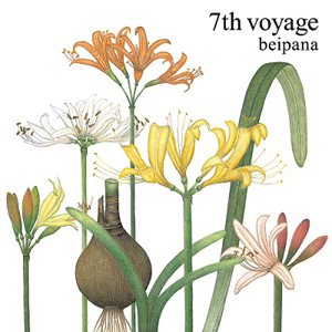 beipana - 7th voyage : JET SET (JPN)
