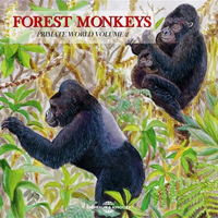 CATHERINE BOUCHAIN & JEAN-PIERRE GAUTIER - Forest Monkeys : CD