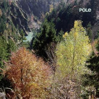 POLE - Wald : POLE (GER)