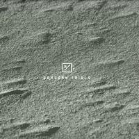 SENSORY TRIALS - TRIAL 01 : 12inch