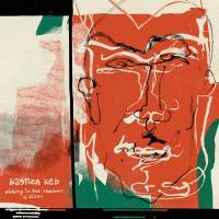 BASTIEN KEB - DINKING IN THE SHADOWS OF ZIZOU : LP