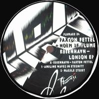 PAXTON FETTEL + NORM DE PLUME - Kobenhavn - London EP : PLUMAGE (UK)