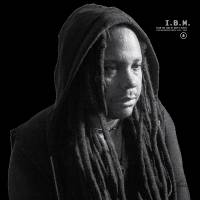 I.B.M. - FROM THE LAND OF RAPE & HONEY (The Suppressed Tapes ) 1995-2005 : INTERDIMENSIONAL TRANSMISSIONS (US)