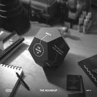 VARIOUS ARTISTS - The Roundup Part.2 : HEIST (GER)