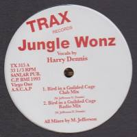 JUNGLE WONZ - Bird In A Guilded Cage : 12inch