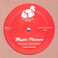 TOM NOBLE & MYSTIC PLEASURE - Back Door (Getting Down) : SUPERIOR ELEVATION (US)