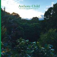 ANTHONY CHILD - Electronic Recordings from Maui Jungle Vol. 1 : 2CD