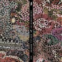 JUZU a.k.a. MOOCHY - COUNTERPOINT Y : CD