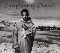 MUSLIMGAUZE - Sycophant of Purdah : STAALPLAAT (GER)