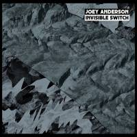 JOEY ANDERSON - Invisible Switch : DEKMANTEL (Netherlands)