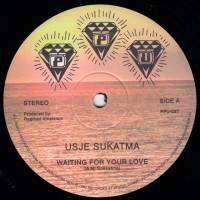 USJE SUKATMA - Waiting For Your Love : 12inch